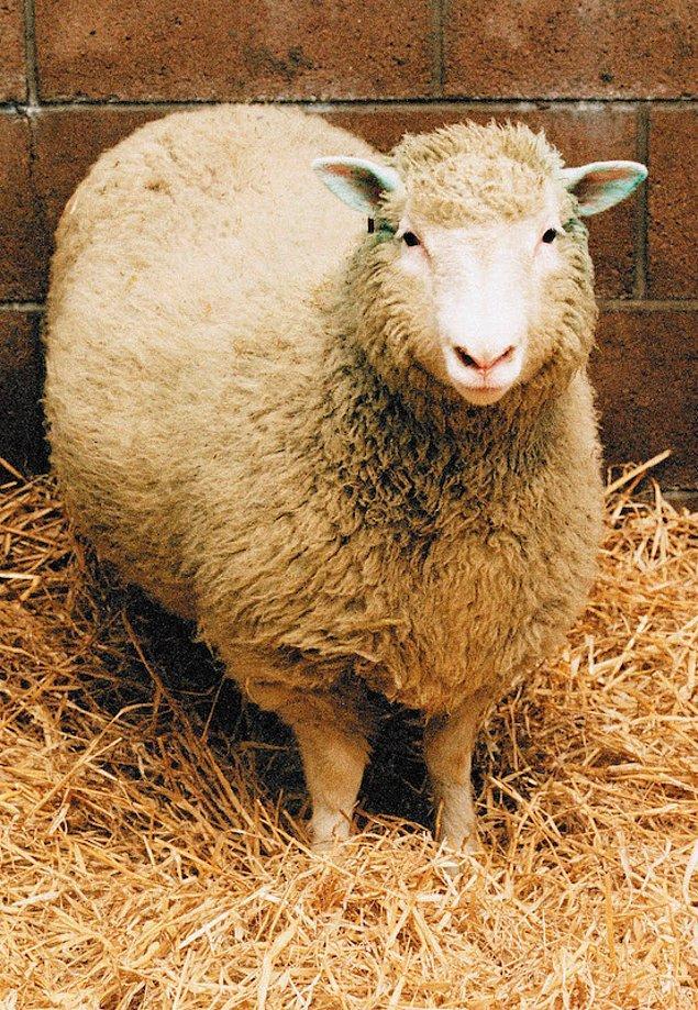1997: Dolly klonlandı.