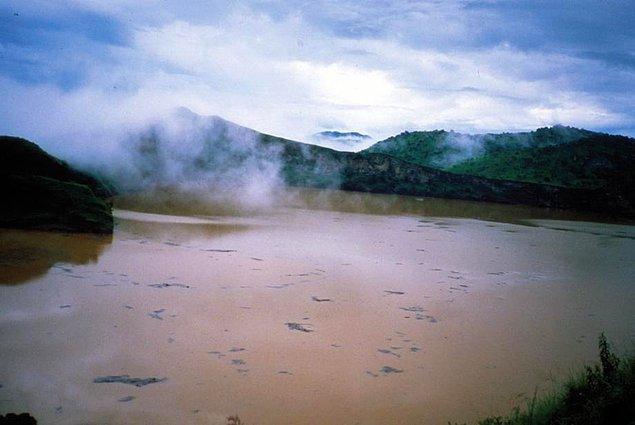 12. Afrika'daki küçük bir göl birden bire 300,000 ton karbondioksit salınca, yaklaşık 26 kilometrelik alandaki her şeyin boğulmasına neden olarak 1,700 köylüyü, 3,500 besi hayvanını öldürmüştür.