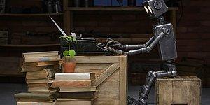 Anne Tarafından Parçalandı: Çin, Ev Ödevini Robota Yaptıran Çocuğu Konuşuyor