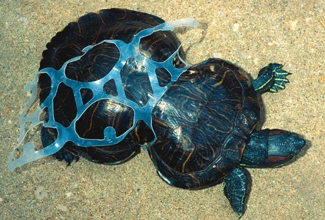 Her yıl, yaklaşık olarak 9 milyon tonluk plastiğin sonu okyanuslar oluyor.
