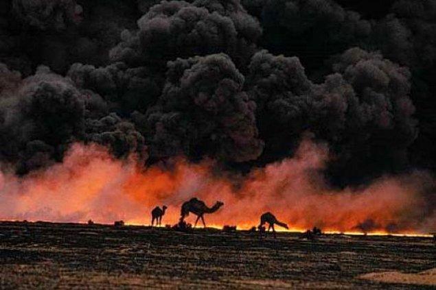 1991: Irak, Kuveyt'ten çekilme kararını açıkladı.
