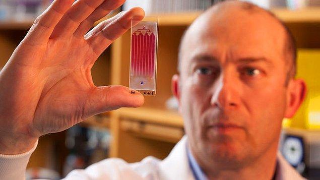Harvard'a bağlı Massachusetts General Hastanesi Biyomikro Elektro Mekanik Sistemleri Merkezi'ni yöneten Prof. Dr. Mehmet Toner, kanser alanındaki çalışmalarıyla Vehbi Koç Ödülü'nü almıştı.