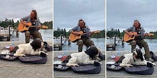 Sokak Müzisyenliği Yapan Dostuna Vokaliyle Destek Olan Köpek