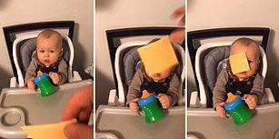 Dünya Tatlısı Kardeşinin Suratına Dilim Peynir Fırlatan Genç, Farkında Olmadan İlginç Bir Akım Başlattı!