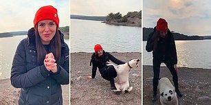 Ormanda 2.5 Yıl Baktığı Köpeği Yeni Ailesinin Yanında Ziyarete Giden Kadına Muhteşem Karşılama