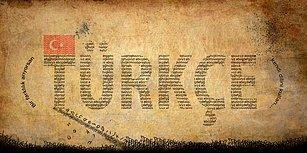 Temel Türkçe Bilgin Hangi Seviyede?