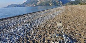 Yuva Sayılarında Azalma Var: Antalya'da Caretta Carettalar İçin 6 Görevli Aranıyor 🐢