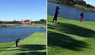 Şanssız Bir Atış Yaparak Ördeği Vuran Golfçü
