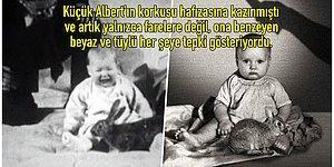 Bilim Adına Çok Önemli Bir Adım Atılmış Olsa da Karşılığında Bir Bebeğin Hayatını Karartan Küçük Albert Deneyi