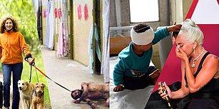 Birazdan Göreceğiniz Bu Fotoğraflar Sadece Vicdanı Olanlarda Ağır Bir Tokat Etkisi Yaratacak!