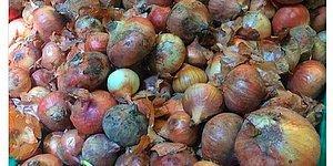 Marketlerdeki Kanserojen Maddeli Soğanlar Hayatımızı Nasıl Tehlikeye Atıyor?