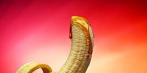 Norveç'in Ünlü Seks Shop Markasının Cinsellik Kullanmadan Hazırladığı 30. Yıl Reklamı!