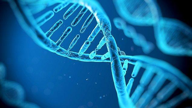 DNA Günü