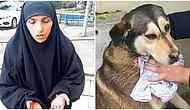 Akıl Hastanesine Yatırıldı: Sokak Hayvanlarını Kesip Yiyen Cani Yakalandı