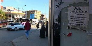 Sultangazi'deki Otobüs Duraklarında 'Sahibinden Satılık Böbrek' İlanı: 'Tüm Tahlillerim Yeni Yapıldı'