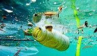 Greenpeace'e Göre Plastik Atıkların Yeni Adresi Türkiye: Kısıtlama Gelmeyince Atık İthalatı Beşe Katlandı