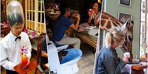 Masanız Klozet Yanı mı Olsun Yoksa Ceset Manzaralı mı? İçeri Girmeden Önce Bir Kere Daha Düşünmeniz Gereken Dünyanın En Garip Restoranları