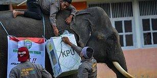 Endonezya'da Seçim Bilançosu: Yorgunluktan Ölenlerin Sayısı 270'i Geçti