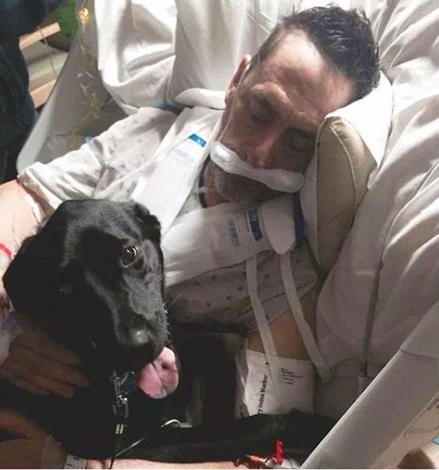 23. Sahibinin doğum günü için hastaneye gizlice sokulan sevimli köpek...