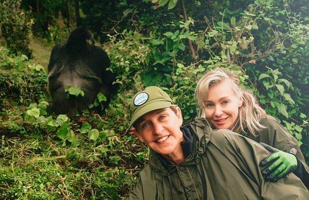 5. Goril barınağı - bedeli bilinmiyor