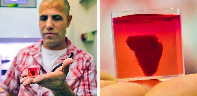 Bir hastadan alınan hücreler ve biyolojik maddeler kullanılarak 3D baskıyla yapılmış bir kalp.
