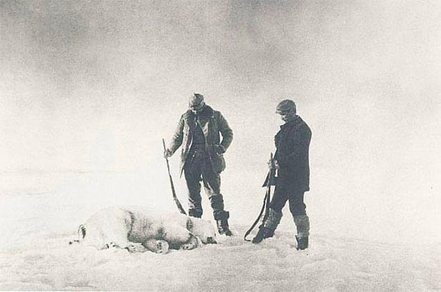 Bölgeyi keşfe çıktıklarında karşılarına çıkan kutup ayılarını avladılar.
