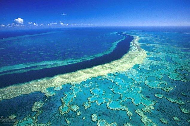 3. Büyük Set Resifi hangi ülkededir?
