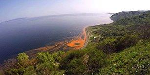 Marmara Denizi'ndeki Kirlilik Havadan Görüntülendi: 'Bize Artık Yüzünü Kızartıyor'