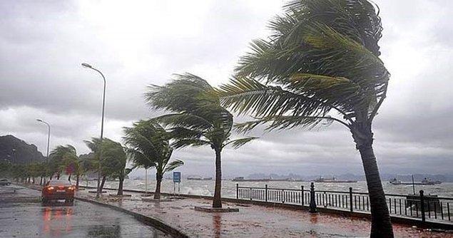 Fırtına : Kasım Fırtınası