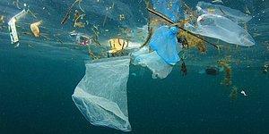 Çevre Kirliliğine Karşı Yeni Adım: AB Tek Kullanımlık Plastik Ürünleri Yasaklıyor