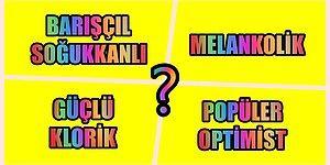 Kişilik Profili Testine Göre Hangi Karakter Grubunda Yer Alıyorsun?