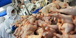 Kırmızı Etin Yeni Rakibi: Tavuk Eti Fiyatları Son Üç Ayda Yüzde 50 Arttı