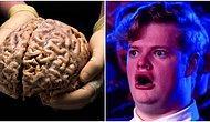 Okuduktan Sonra Bir Güzel Aydınlanma Yaşayacağınız Kısa Beyin Yakan 14 Gerçek