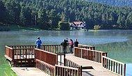 Kazanan Doğa Oldu! Mahkeme Gölcük Tabiat Parkı'na Bungalov Projesini İptal Etti