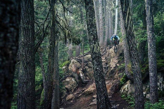 Fotoğrafçı Dave Trumpore, bu fotoğrafı Whistler, Kanada'da çekmiş.