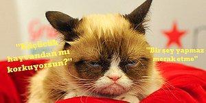 Sadece Kediden Korkanların Anlayacağı 15 Tespit Gibi Tespit