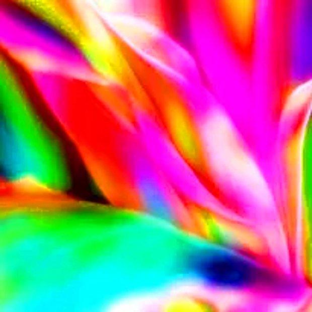 Neon/canlı renkler
