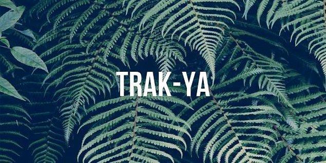 """4. """"Trakya"""" kelimesi doğru bir şekilde hecelerine ayrılmış mıdır?"""