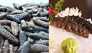 Protein Değeri Oldukça Yüksek Olan ve Üretimi Devlet Kontrolünde Yapılan Deniz Patlıcanı Ne İşe Yarar, Faydaları Nelerdir?