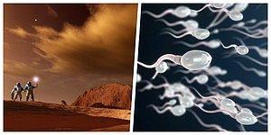 Mars'ta Erkekler Olmadan da Koloniler Kurulabilir mi? Spermlerin Düşük Yer Çekiminde Hayatta Kalabildiğini Gösteren Çalışma