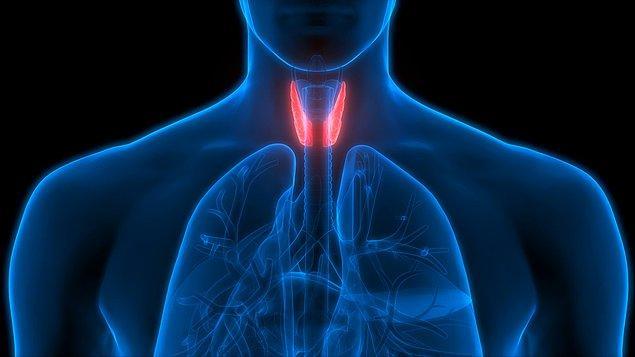 7. Hipotiroidi