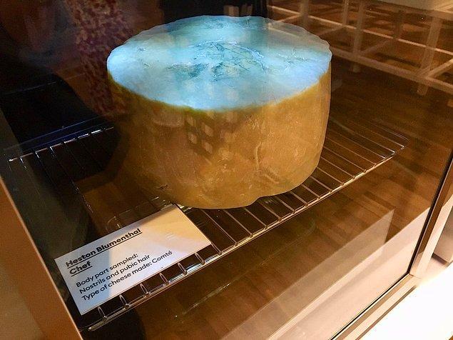 5 ünlünün göbek deliğinden bakterileri toplayıp, mikroorganizmaları sütle karıştırarak akla gelebilecek en rahatsız edici peynir türünü ortaya çıkardılar.