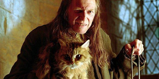 13. Karakter isimlerine gelirsek, mitolojide çok gözlü olması ve her şeyi görmesiyle bilinen Argus da Harry Potter serisinde kendine yer bulmuştur. Gözünden hiçbir şey kaçmayan hademenin adının J.K. Rowling tarafından Argus olarak seçilmesi tesadüf değildir.