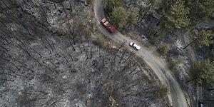 Ciğerimiz Yandı! Dalaman'da Başlayan ve Göcek'e Sıçrayan Orman Yangını Sonrası Duygularımıza Tercüman Olan Paylaşımlar