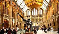 Kültür Tatili Sevenler İçin Dünyanın En Çok Ziyaret Edilen Müzeleri ve Galerileri