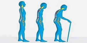Kadınların Yüzde 80'inde Görülen Osteoporoz Riskini Artıran Faktörler