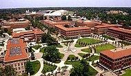2019 Bursa Teknik Üniversitesi Taban Puanları ve Başarı Sıralamaları