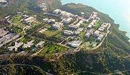 2019 Çukurova Üniversitesi Taban Puanları ve Başarı Sıralamaları
