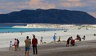 Tepkilere Rağmen: Salda Gölü'ne Millet Bahçesi İçin İhale Yapıldı