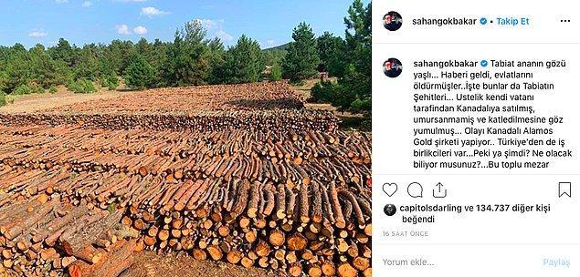 """Instagram hesabından yaptığı paylaşımla kesilen ağaçların görüntülerini paylaştı ve """"Yıllarca zehirlerini bu topraklara akıtıp, bütün herkesi kanser edip, bitkileri kurutup, nehirleri kaynak sularını bok edip, hayvanları öldürüp defolup gidecekler Kanadalarına"""" dedi."""